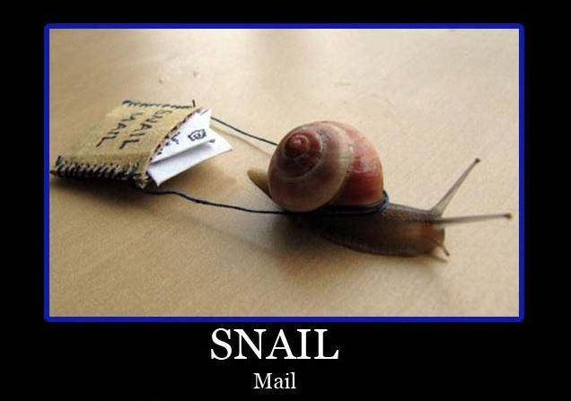 I'll take a generous helping of Escargot please