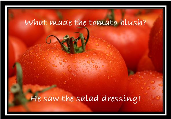 Summer's End Harvest – Swimming in Tomatoes?