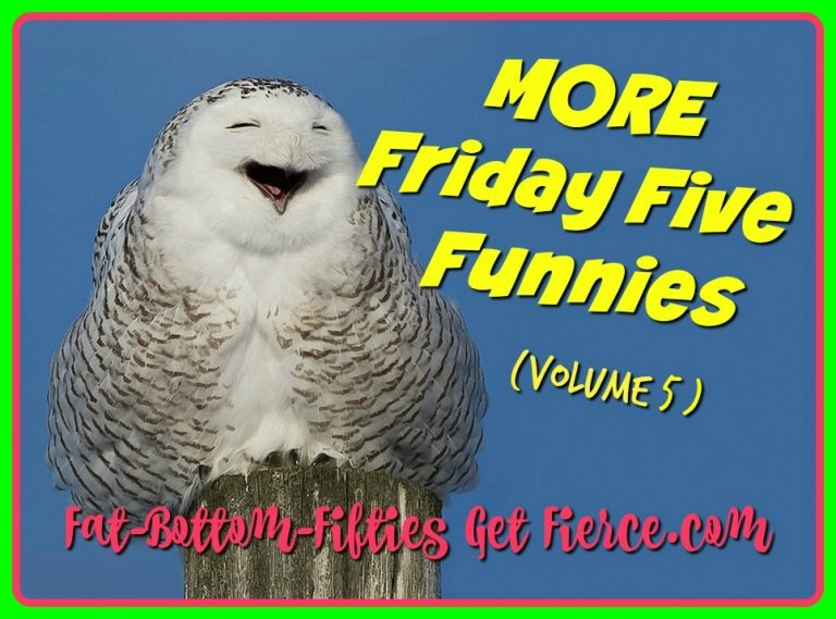More Friday Five Funnies – Volume 5
